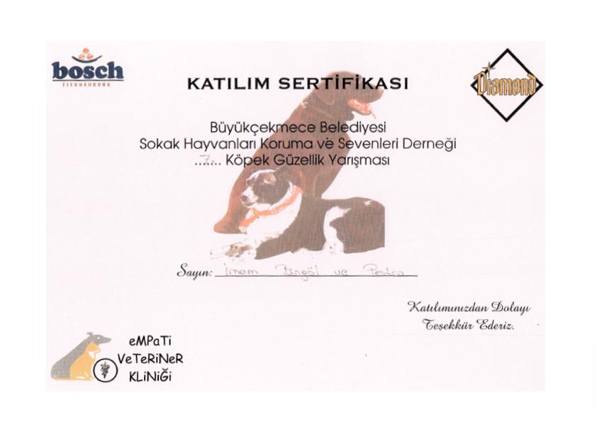 Köpek Güzellik Yarışması Katılım Sertifikası