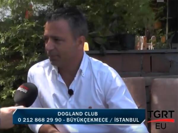 DOGLAND CLUB