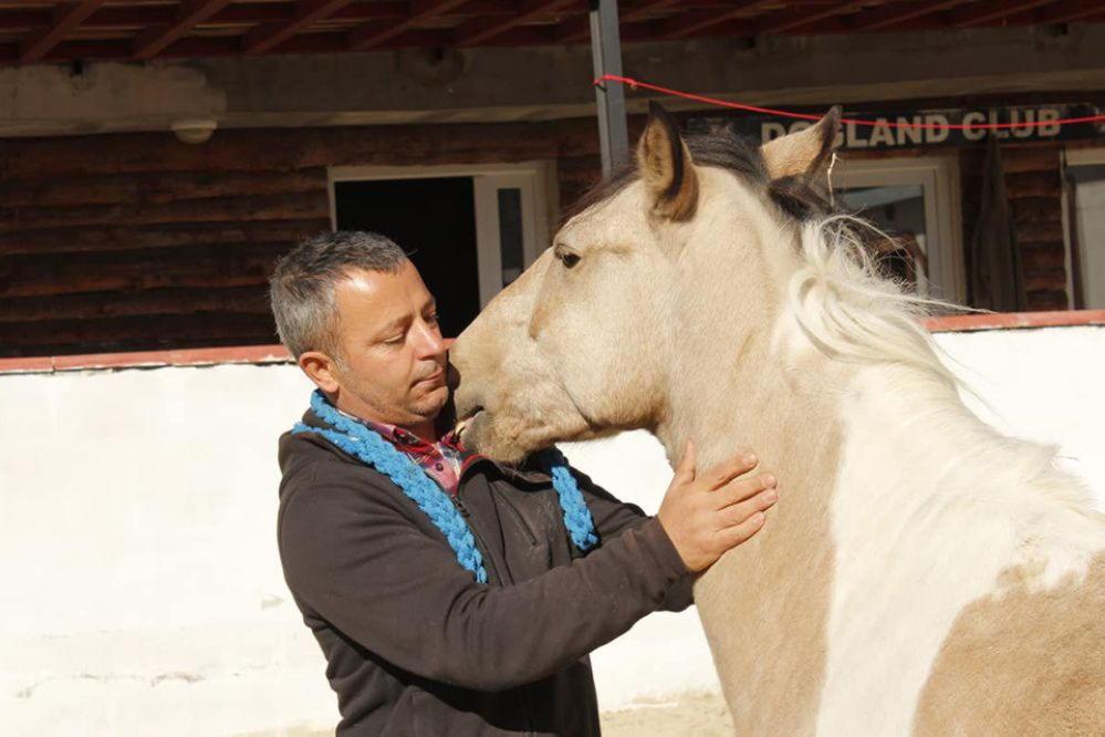 At Çiftliğimiz
