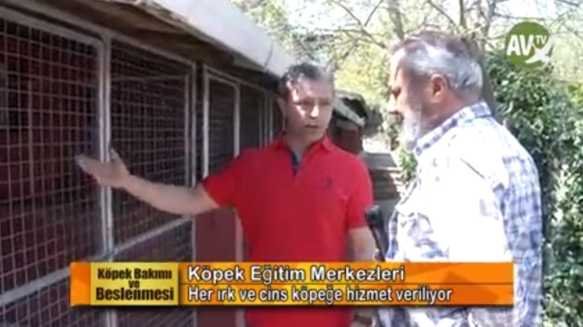 Köpek Bakımı ve Beslenmesi-Dogland Club/İstanbul - 25 Nisan 2018